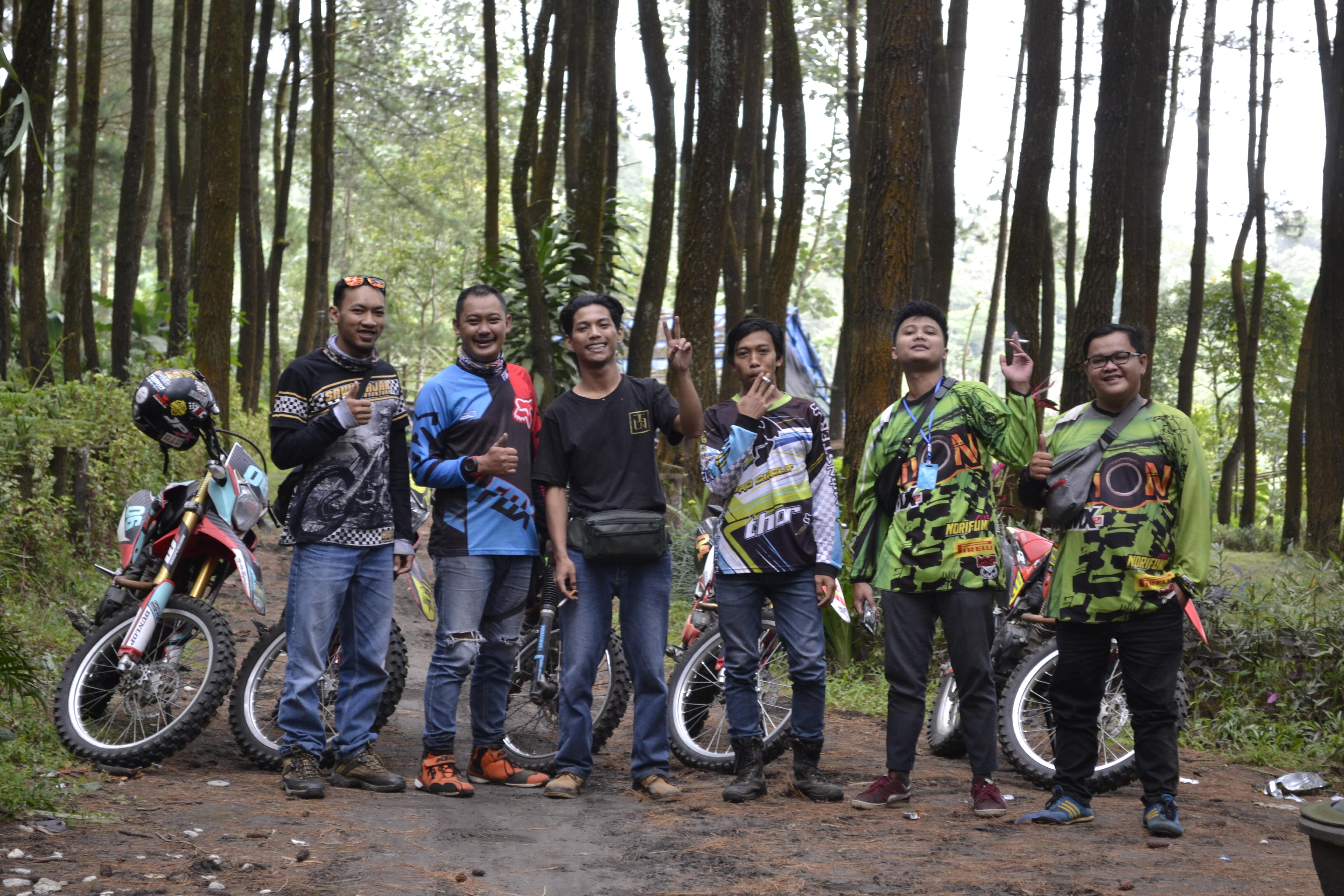 jalur trail hutan pinus semeru |Sawojajar Adventure Rental Trail
